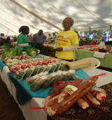 ZIMBABWE: Women Empowerment for Sustainable Development – Zimbabwe Keeps the Promise